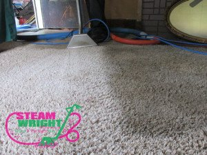 cleaning carpet in mayfield, ky